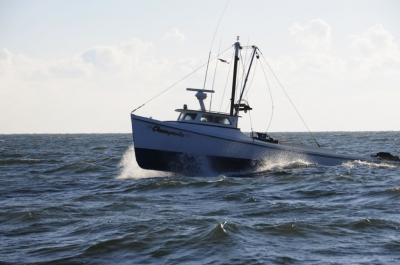Seaworthy, Reliable and Safe